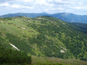Členitý reliéf vytváří podmínky pro pestrou škálu úzce specializovaných horských společenstev (Krkonoše, pohled z Kotle směrem na Sněžku). Foto M. Vítková