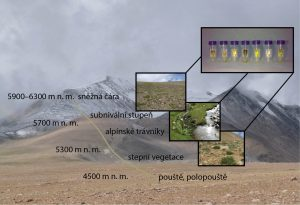 Studovaná lokalita v oblasti Ladaku, Indie, Tibetská náhorní plošina: Habitaty a nadmořské výšky, ze kterých byly extrahovány mikrobiální fotoprotektivní pigmenty v půdách.