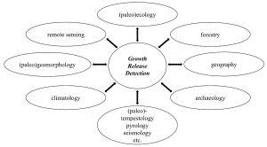 Hlavní vědecké obory s velkým potenciálem pro využití letokruhů jako informace o historii disturbance.