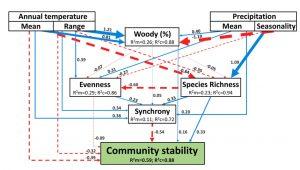 Strukturální modelování ukazující přímé a nepřímé účinky více abiotických a biotických faktorů na stabilitu