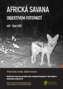 Africká savana objektivem fotopastí - plakát k výstavě